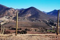 Gremio agrícola envía cartas a todas las autoridades de la región con propuestas de apoyos y proyectos por sequía