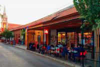 Locales de Vicuña celebrarán Día del Café